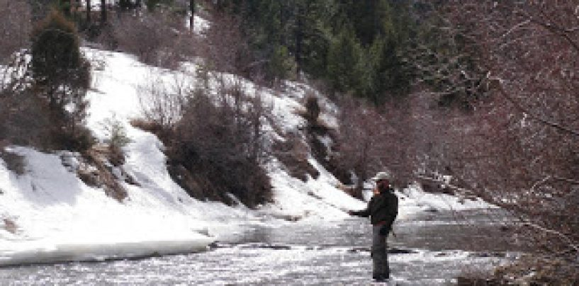 Bear Creek Monday March 12, 2012