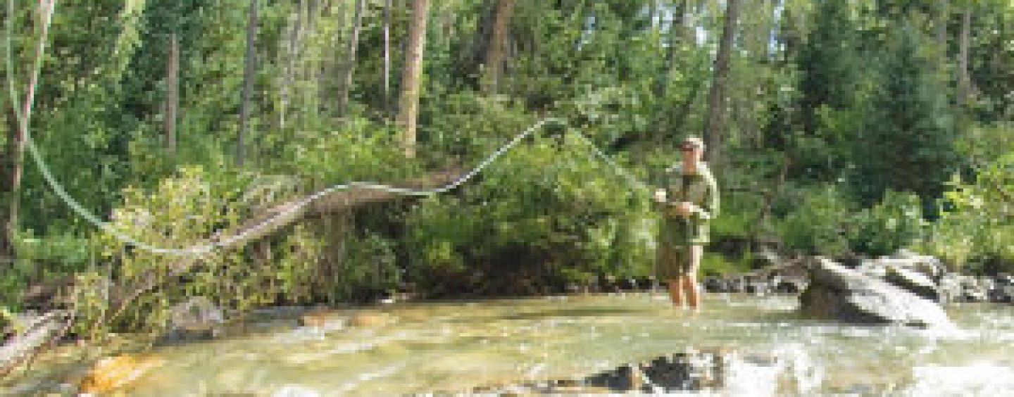Colorado's Best Fly Fishing Book Review
