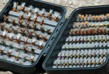 Entomology and Tenkara: Is it worth it?